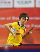 图文:[乒乓球]亚洲杯郭跃无缘决赛 在比赛中