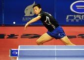 图文:乒乓球亚洲杯马龙夺冠军 马龙正手回球