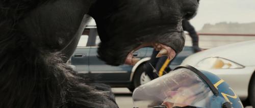 观感逼真如此,我们甚至都可以清晰看见喷到面罩上的猩猩唾液