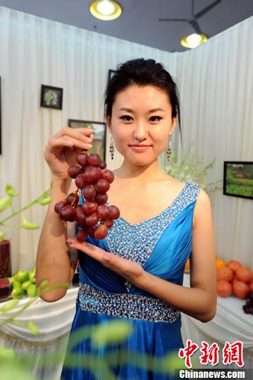 图为美女模特在展示一串葡萄.刘占昆 摄刘占昆 摄