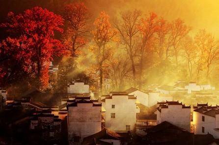 婺源有很多古村,值得拍摄的地方也有很多;婺源也有很多枫树,秋天也会很红很红,但把两者结合起来,构成一幅优美的画卷的不多。石城,长溪应当是比较出色的二个地方。
