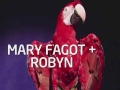 《创想计划》Mary Robyn(瑞典)