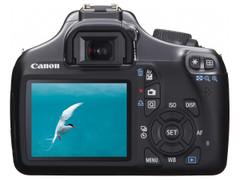 图为:佳能数码相机1100D