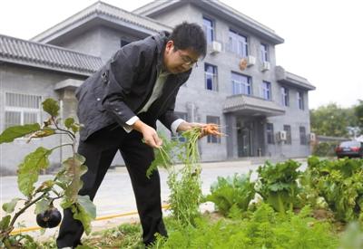 10月19日清晨7时30分,距离上班时间还有1个小时,早起的袁煜驰跑到法庭门外的菜园子里拔了几个胡萝卜,送到厨房拌凉菜。