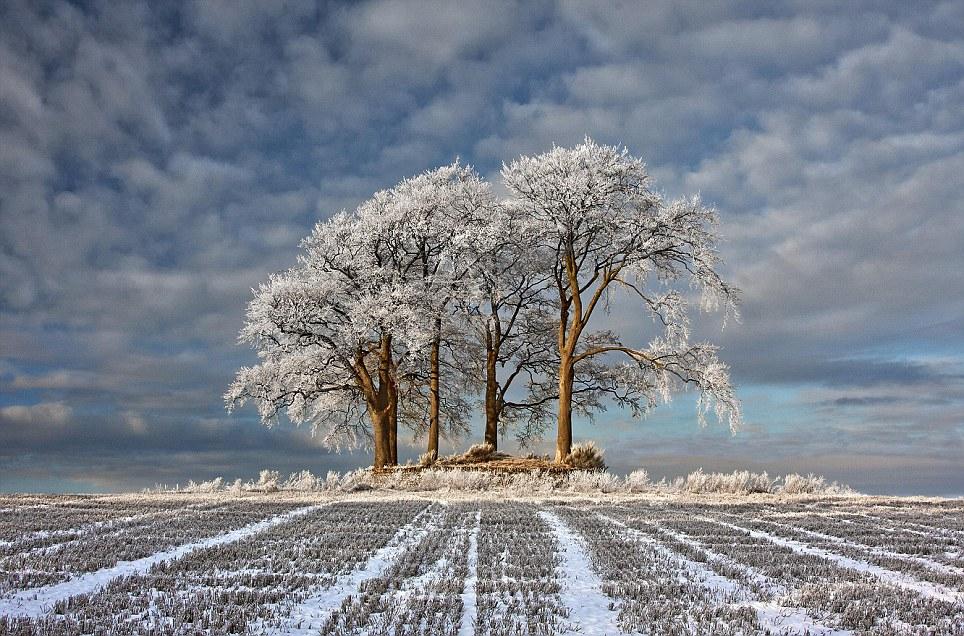 无以言喻的冬日美景: