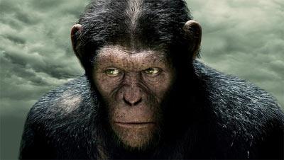 影片中猩猩凯撒的细腻眼神着实令人叹为观止