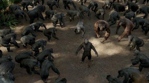 这些猩猩的群戏,都是由真人演员依靠动作捕捉完成,演员的敬业让人肃然起敬