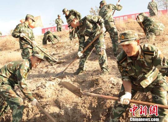 新疆驻乌部队两万官兵荒山播绿(组图)