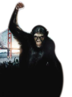 """演员们模仿猩猩走路,跳跃等,每一个细微的动作和表情都会被机器""""尽收图片"""