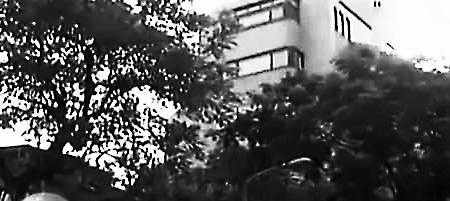 琼瑶大全5亿元图片曝光中式别墅7层独栋风格别墅庭院十二庭院市值图片图片大全