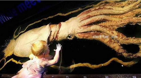 世界最恐怖的_图揭世界上最恐怖的人尸博物馆