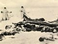 1910哈尔滨大瘟疫