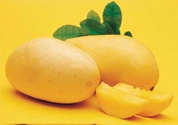 芒果:芒果是热性水果,容易上火,过早给孩子吃容易造成过敏。