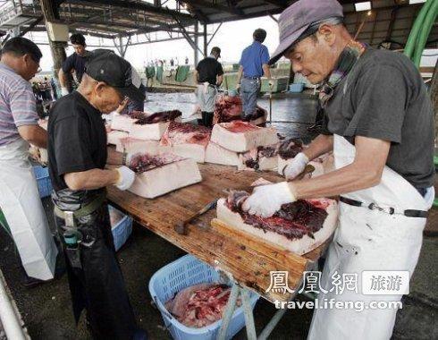 日本捕杀屠宰鲸鱼惊心现场 你还吃鲸鱼肉吗(组