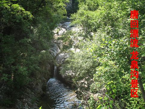 夏县泗交生态旅游图片