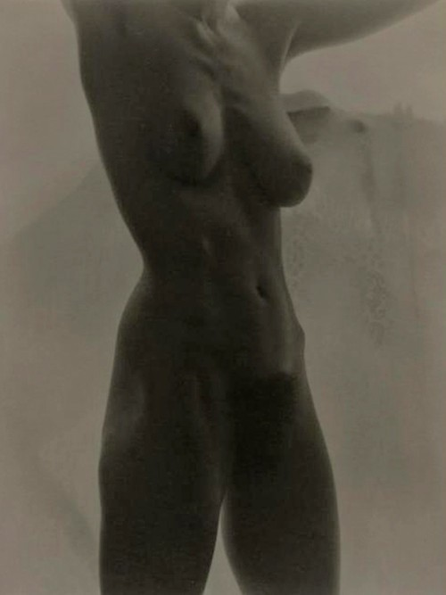 Alfred Stieglitz 《Georgia O'Keeffe Nude 》,2006年2月在纽约苏富比拍出136万美元。