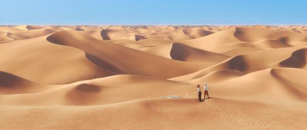 丁丁的飞机迫降在撒哈拉沙漠中
