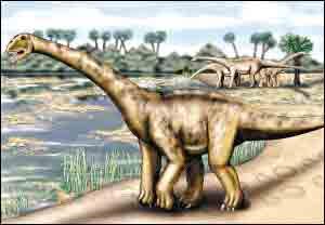 什么恐龙最厉害囹�a_欧洲有史以来最大恐龙化石 体重相当7头大象(组图)