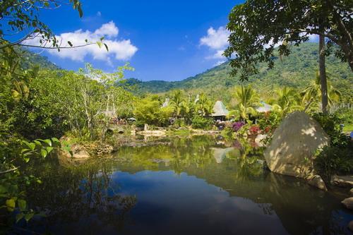 海南岛热带雨林_海南呀诺达:让人一心向往的热带雨林[组图]-搜狐滚动