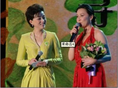 著名影视明星刘嘉玲荣获幸福力女性人物奖