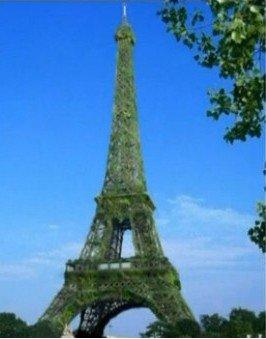 """埃菲尔铁塔或身披""""绿植""""变身""""最大的树"""""""