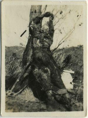 黄继光牺牲后的遗照。(图片来源:环球网)
