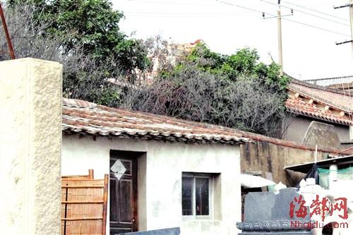 粉尘飘散到一墙之隔的谷城宫内,梅花树上一片白灰
