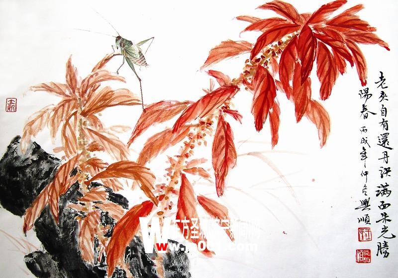 雁来红的画法(组图)