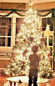 如何拍摄闪闪发亮的圣诞树