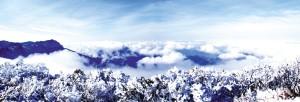 金佛山雪景