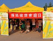 搜狐健康夏日游园会