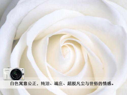 白色象征的意义
