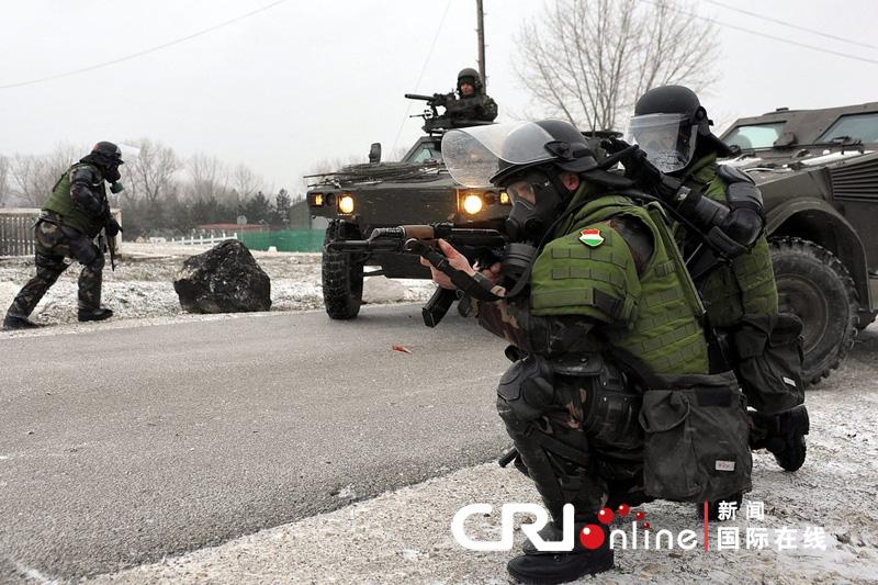 国际维和部队介入科索沃暴力示威活动(高清组图)