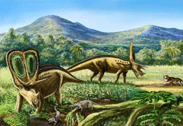 白垩纪动物 灭绝
