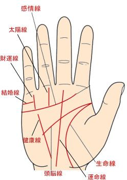 Palm reading guide for men with pictures