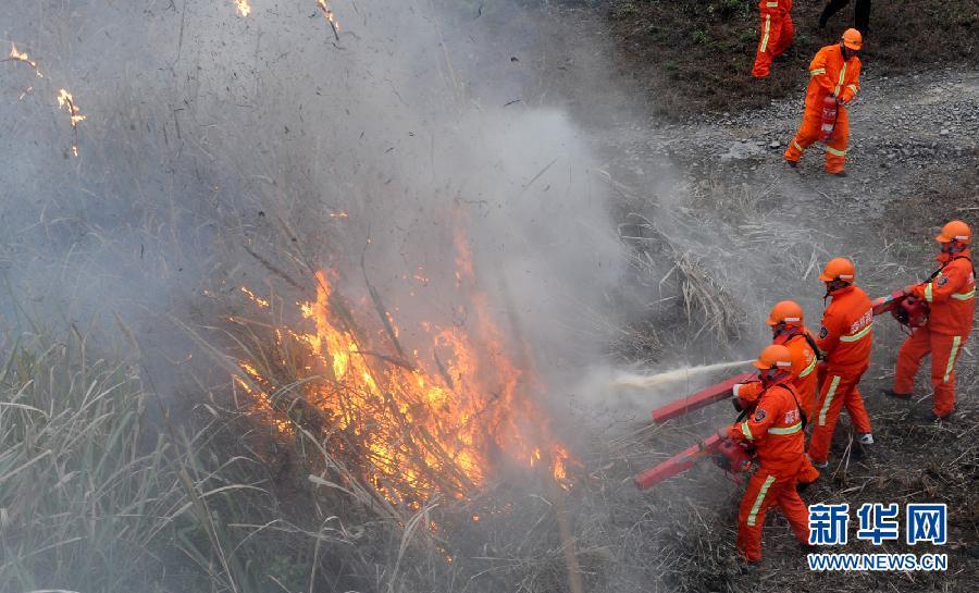 12月27日,森林消防员在长江三峡风景名胜区宜昌辖区进行灭火演习.图片