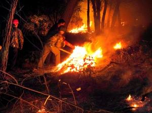 森林消防员深夜战 魔(组图)图片
