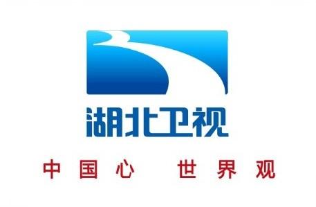 国家广电总局正式批复湖北卫视启用新台标