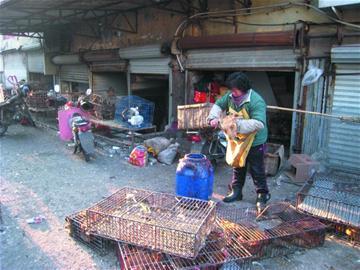 现场 青岛/2012年01月07日14:58 为了彻底整治南山市场周边秩序,从去年...