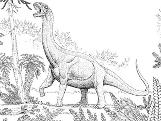 图:侏罗纪蜥脚类恐龙
