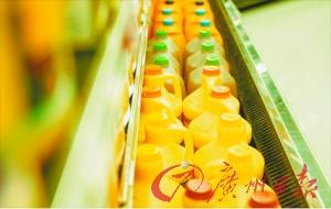 生产线中的橙汁。 资料图片