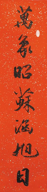 书法家挥毫泼墨龙飞凤舞迎春节(组图)图片