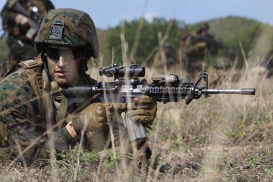 金色眼镜蛇军演_日媒称金色眼镜蛇军演由美国主导 威慑中国(组图)