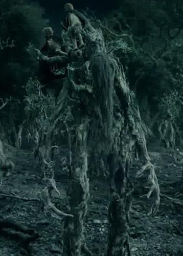 指环王 中的树人