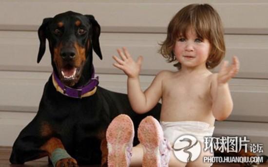 主人与宠物间的感人故事
