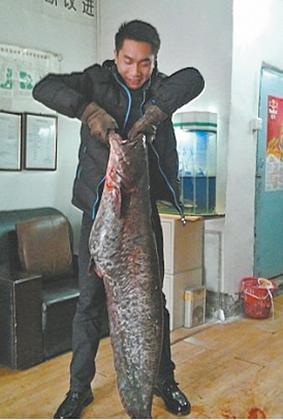 一蓑一笠一扁舟_乌鲁木齐一男子红雁池钓起钓23.46公斤大鱼成传奇(图)-搜狐滚动