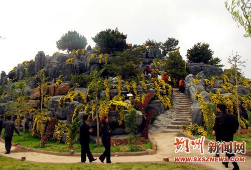 朔州市金沙植物园