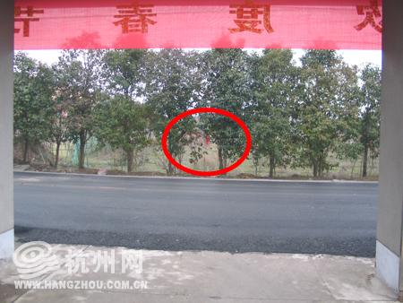 红色 小偷/嫌疑人在村委会门口系红色塑料袋做标记
