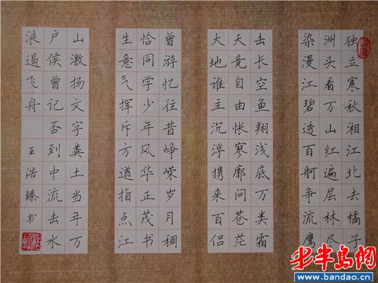 胶南四中王浩臻参加比赛获得一等奖的硬笔书法图片