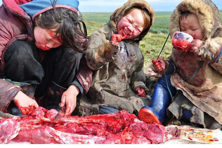他们是北极冻土带驯鹿牧民